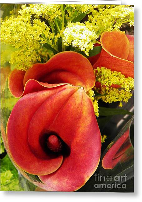 Calla Lily Greeting Cards - Red Callas Greeting Card by Sarah Loft