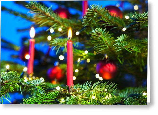 Candle Lit Greeting Cards - Red Candles In Christmas Tree Greeting Card by Ulrich Schade