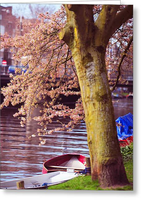 Jenny Rainbow Fine Art Photography Greeting Cards - Red Canoe. Amsterdam Canals with Blooming Trees. Pink Spring in Amsterdam Greeting Card by Jenny Rainbow