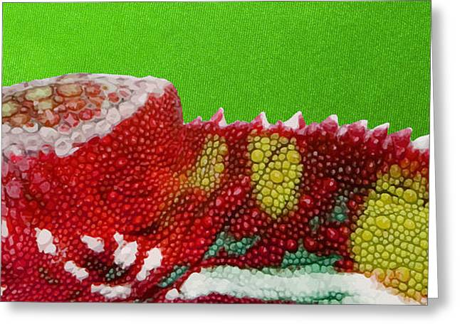 Ultra Modern Greeting Cards - Red Chameleon on Green Greeting Card by Serge Averbukh