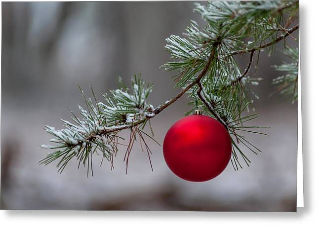 Family Love Greeting Cards - Red Christmas Ball Branch Greeting Card by Terry DeLuco