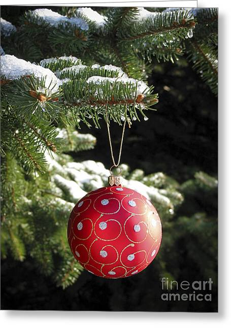 Red Christmas Ball On Fir Tree Greeting Card by Elena Elisseeva