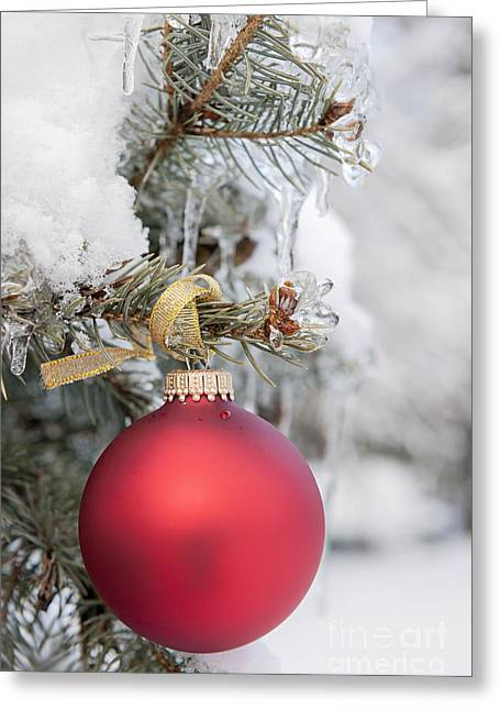 Decorate Greeting Cards - Red Christmas ornament on snowy tree Greeting Card by Elena Elisseeva