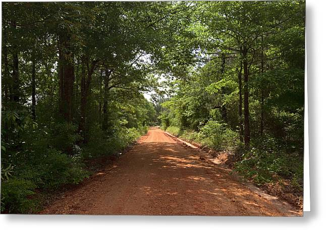 Red Clay Greeting Cards - Red Clay Road through the Forest - Alabama Greeting Card by Mountain Dreams