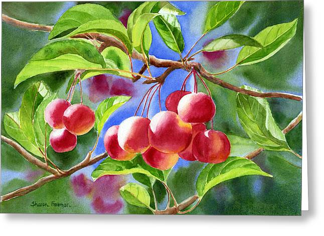 Red Fruit Greeting Cards - Red Crab Apples with Background Greeting Card by Sharon Freeman