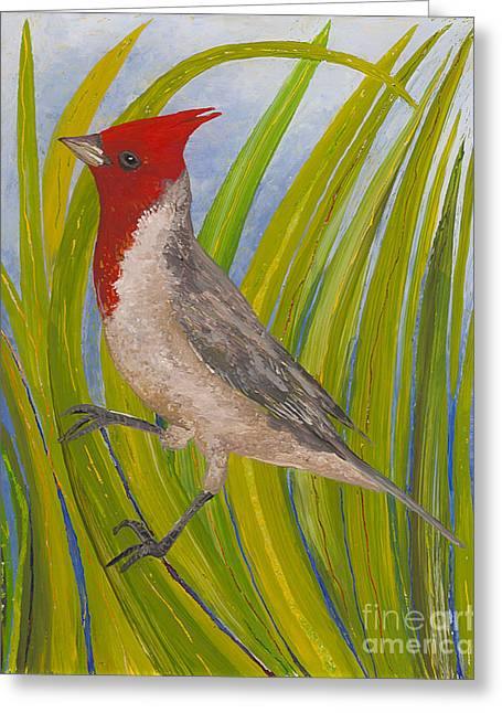 Fauna Glass Art Greeting Cards - Red-crested Cardinal Greeting Card by Anna Skaradzinska