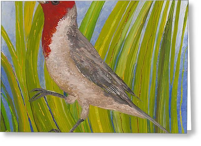 Red-crested Cardinal Greeting Card by Anna Skaradzinska