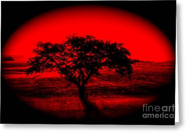 Shudder Greeting Cards - Red Dawn - No.7328i Greeting Card by Joe Finney