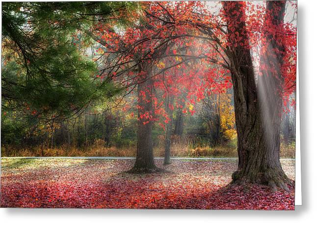 Red Dawn Greeting Card by Bill Wakeley