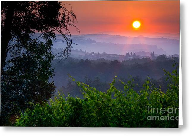 Winemaking Photographs Greeting Cards - Red Dawn Greeting Card by Inge Johnsson