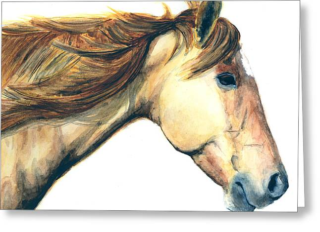 Quarter Horse Greeting Cards - Red Dun Greeting Card by Suzanne Sudekum