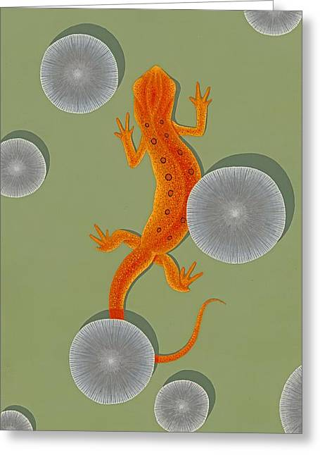 Red Eft Newt Greeting Card by Nathan Marcy
