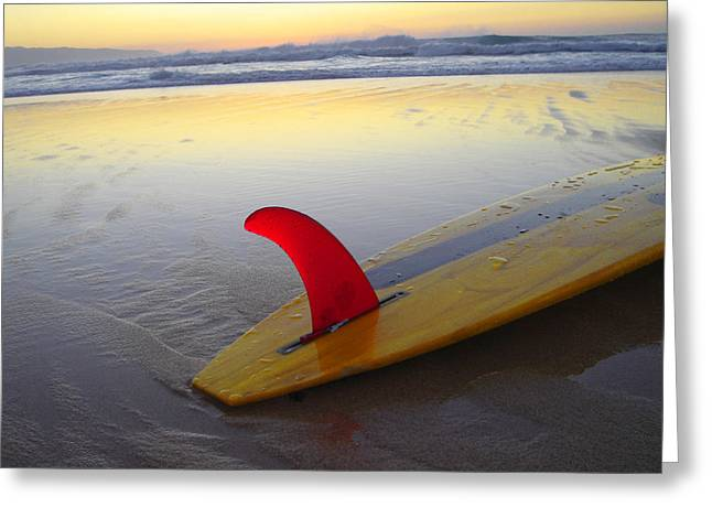Surf Lifestyle Greeting Cards - Red Fin Sunset Greeting Card by Sean Davey