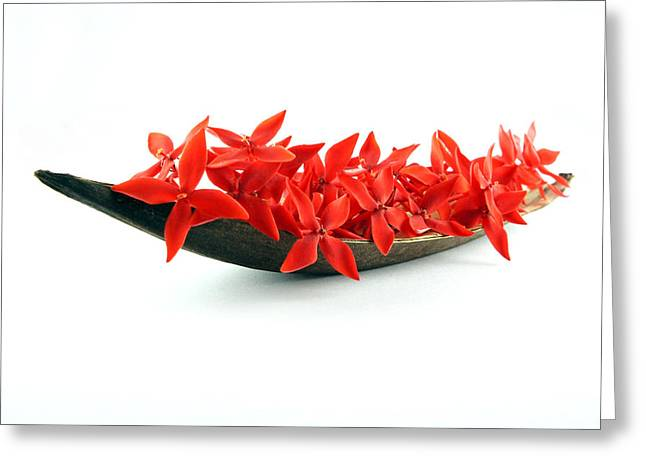 Canoe Greeting Cards - Red Flower Boat Greeting Card by Aged Pixel