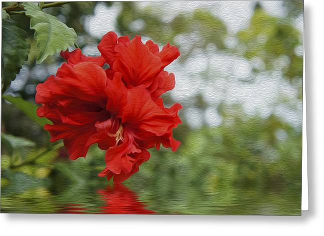 Red Leaves Digital Greeting Cards - Red Flowers Greeting Card by Aged Pixel