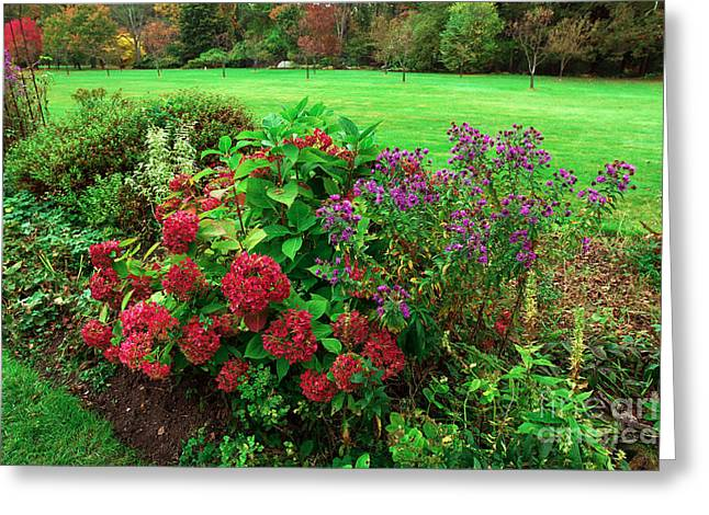 Garden State Greeting Cards - Red Flowers in the Skylands Greeting Card by John Rizzuto