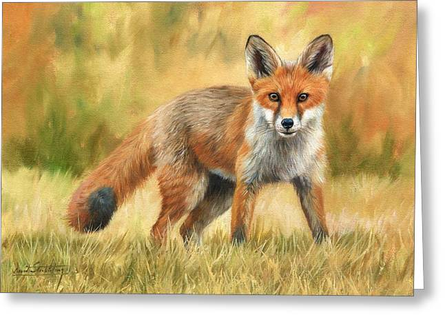 Fox Paintings Greeting Cards - Red Fox Greeting Card by David Stribbling