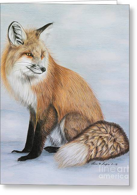 Drawing Color Pencils Drawings Greeting Cards - Red Fox Greeting Card by Lena Auxier