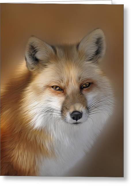 Clever Greeting Cards - Red Fox Greeting Card by Linda Muir