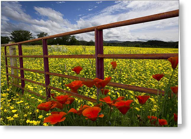 Tennessee Farm Greeting Cards - Red Gate Greeting Card by Debra and Dave Vanderlaan