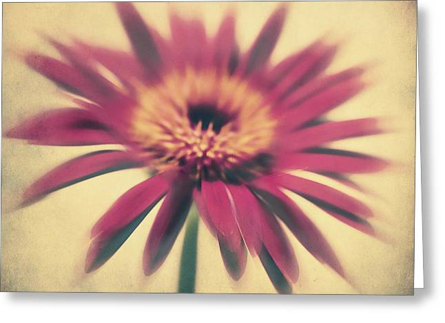 Textured Flower Greeting Cards - Red Gerbera Greeting Card by Angela Doelling AD DESIGN Photo and PhotoArt