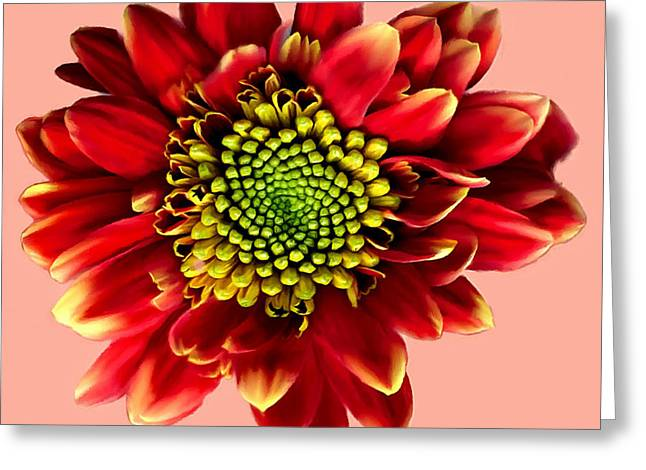 Stamen Digital Art Greeting Cards - Red Gerbera Daisy Painting Greeting Card by  Bob and Nadine Johnston