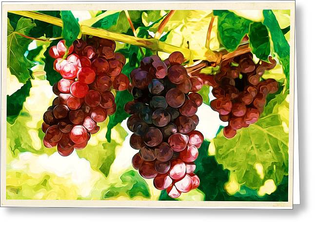 Winemaking Paintings Greeting Cards - Red grapes in the vineyard Greeting Card by Lanjee Chee
