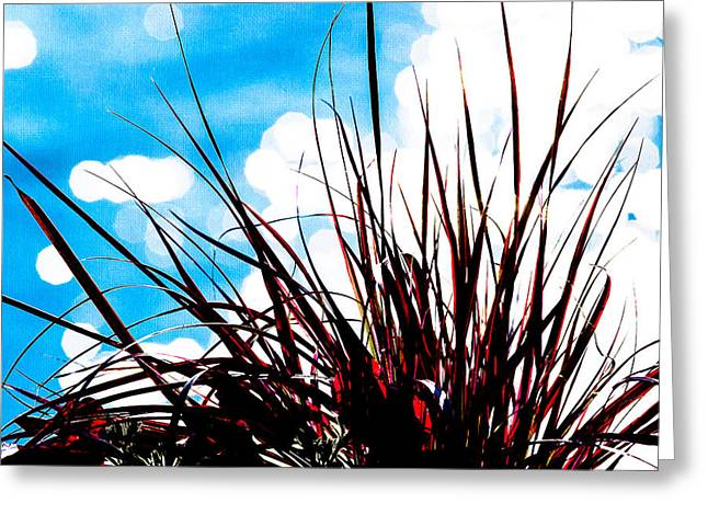 Herbage Greeting Cards - Red Grass 1 Greeting Card by Alexander Senin