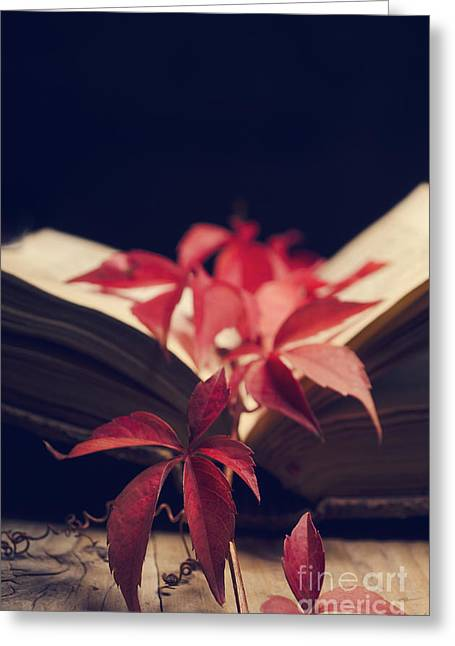 Autumn Pyrography Greeting Cards - Red ivy in the book Greeting Card by Jelena Jovanovic