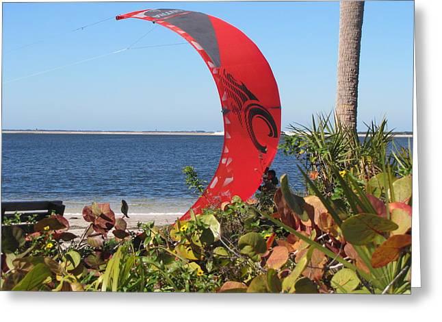 Kite Boarding Greeting Cards - Red Kite Greeting Card by Nancy  Hopkins