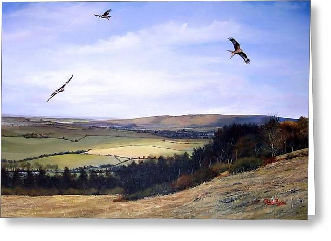 Risborough Greeting Cards - Red Kites at Coombe Hill Greeting Card by Barry BLAKE