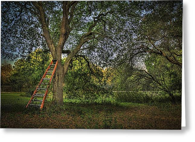 Moss Greeting Cards - Red Ladder and Oak Greeting Card by Marvin Spates