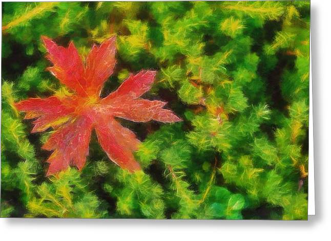 Red Leaves Mixed Media Greeting Cards - Red Leaf On Green Moss Greeting Card by Dan Sproul