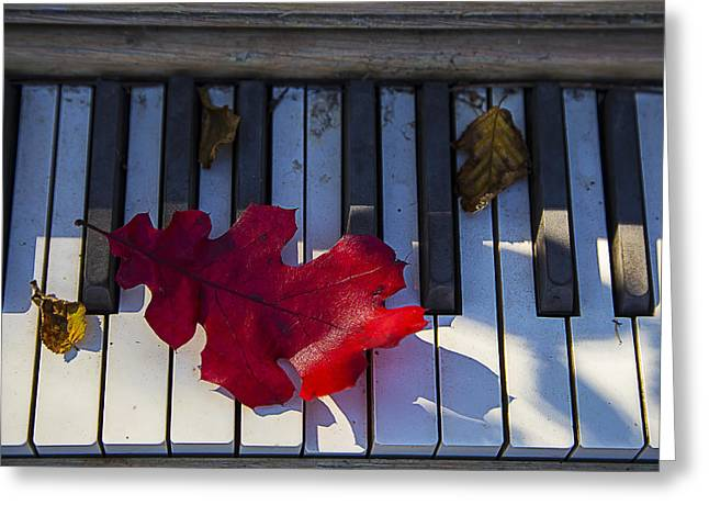 Keyboard Photographs Greeting Cards - Red leaf on old piano keys Greeting Card by Garry Gay