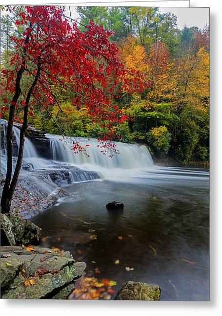 Peaceful Greeting Cards - Red Leaves in Dupoint Park Hooker Falls Greeting Card by Andres Leon