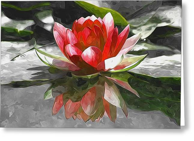 Recently Sold -  - Water Lilly Greeting Cards - Red Lotus Flower Greeting Card by Lanjee Chee