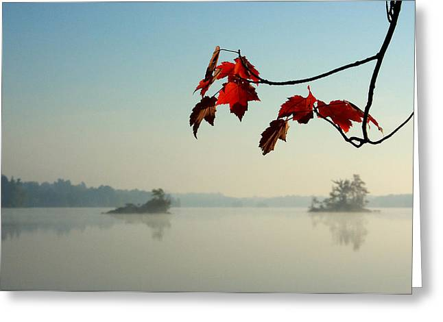 Paul Wash Greeting Cards - Red Maple Leaves and Islands in the Morning Mist Greeting Card by Paul Wash