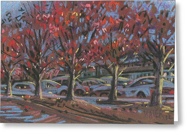 Autumn Pastels Greeting Cards - Red Maples Greeting Card by Donald Maier