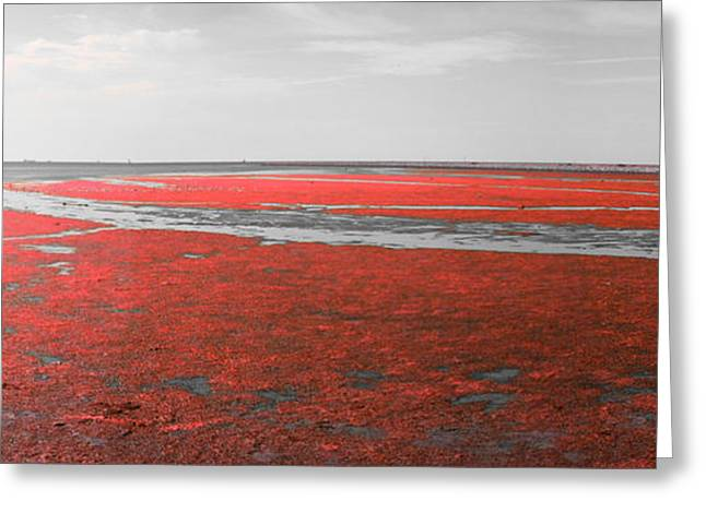 Morass Greeting Cards - Red marshland Greeting Card by Skander Do