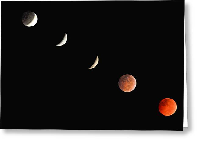 Donnie Smith Greeting Cards - Red Moon Greeting Card by Donnie Smith