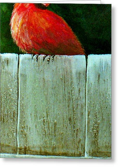 Fineartamerica Greeting Cards - Red On the Fence  Greeting Card by Susan Duda