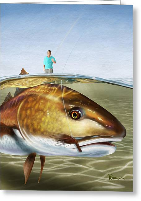 Redfish Greeting Cards - Red On The Fly Greeting Card by Kevin Putman