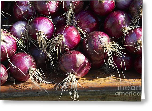 Farm Stand Greeting Cards - Red Onions Greeting Card by Tony Cordoza