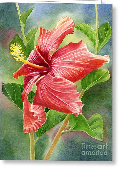 Tropical Flower Greeting Cards - Red Orange Hibiscus with Background Greeting Card by Sharon Freeman