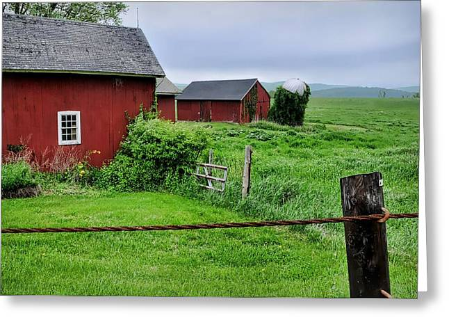 Barn And Silo Greeting Cards - Red Pasture Greeting Card by Diana Angstadt