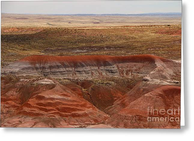 Red Petrified Dunes - Painted Desert Greeting Card by Christiane Schulze Art And Photography