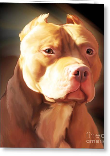 Spano Greeting Cards - Red Pit Bull by Spano Greeting Card by Michael Spano