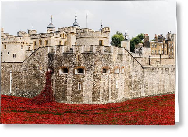 Palace Of The Normans Greeting Cards - Red poppies in the moat of the Tower of London Greeting Card by Twilight View