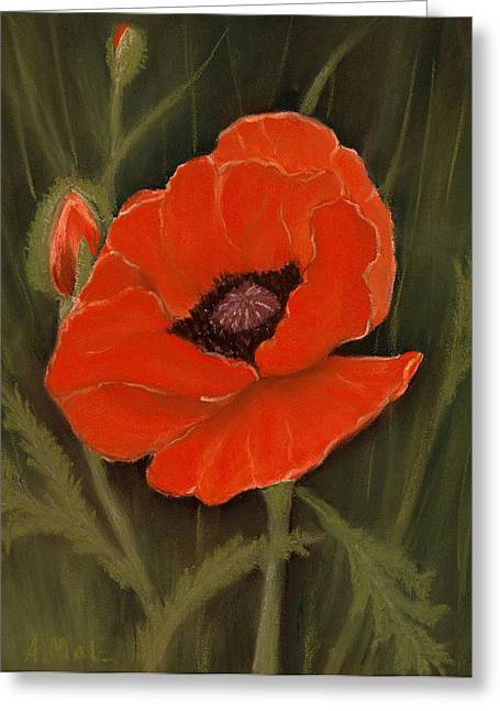 Gift Pastels Greeting Cards - Red Poppy Greeting Card by Anastasiya Malakhova