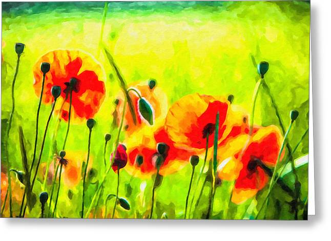 Photoshop Paintings Greeting Cards - Red poppy flowers meadow Greeting Card by Lanjee Chee